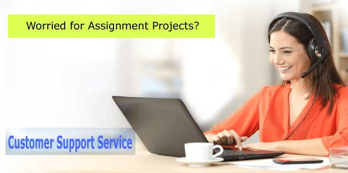 Assignment Writing Help and Key Points to Make Amazing Stories.