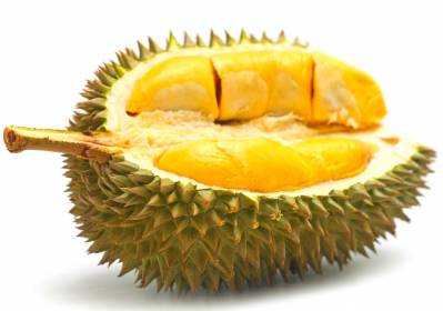 The Durian Express