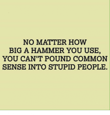 On Common Sense
